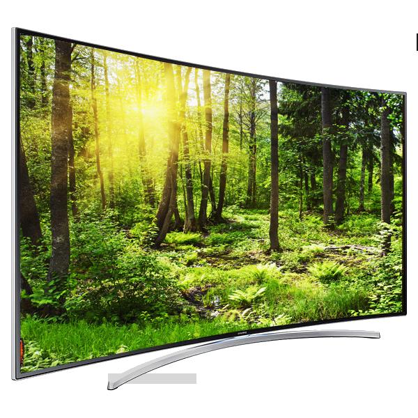Forest_TV_Flip